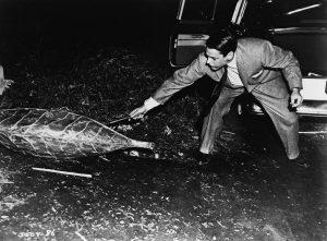 kevin-mccarthy-in-världsrymden-anfaller-(1956)