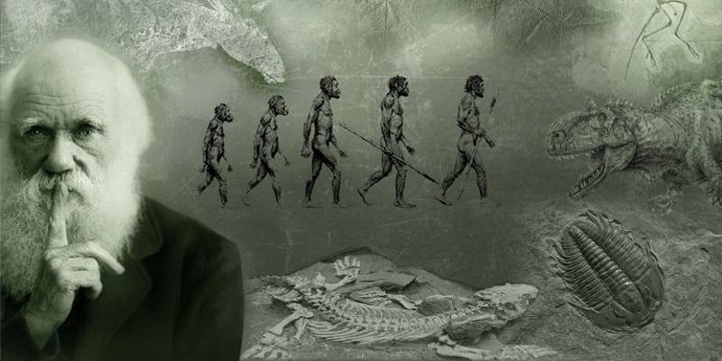 Charles Darwin, Evolución