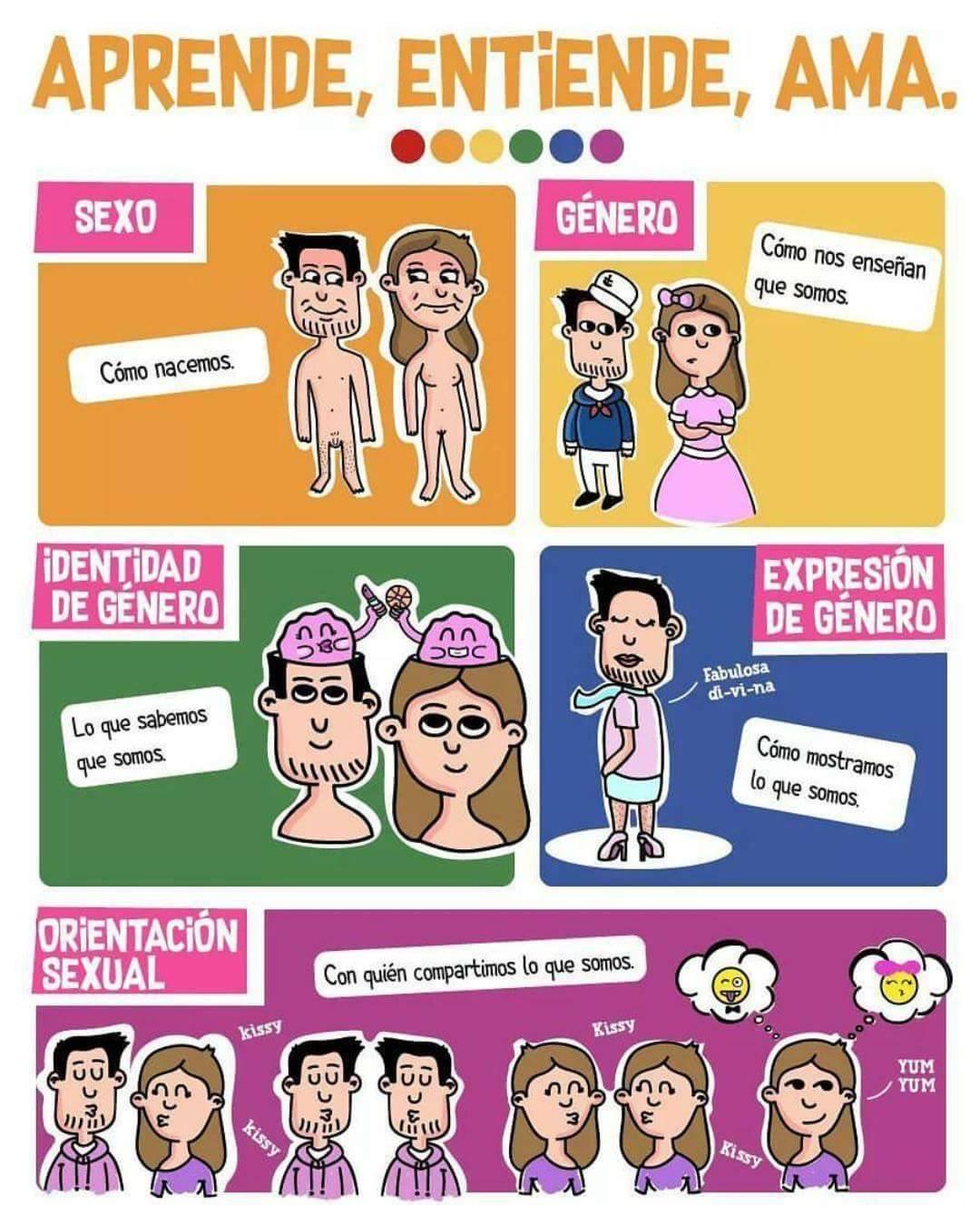 """Así califica la web del Instituto este cartel: """"Una maravillosa infografía que deja birn claro la distinción entre el Sexo, Género, Identidad, Expresión de Género y Orientaciones del deseo. Qué viva la diversidad…"""""""