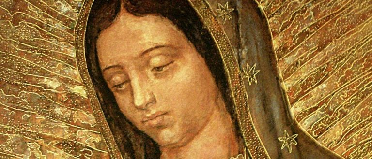 La Virgen de Guadalupe, verdadera Madre de América