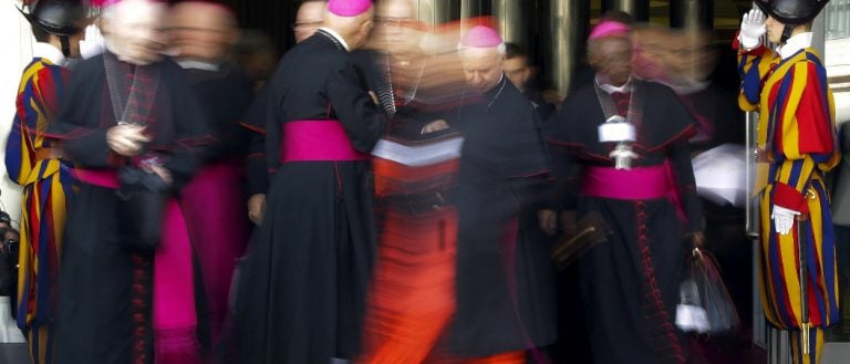 Terrorismo sinodal