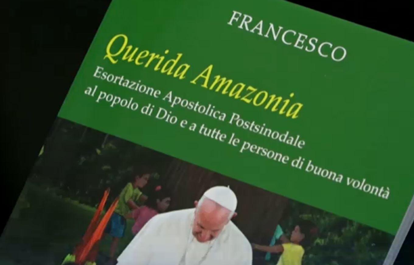 Bildergebnis für Querida Amazonia
